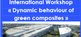 International Workshop « Dynamic behaviour of green composites »