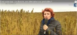 VIDEO**Le chanvre, une alternative aux pesticides ?