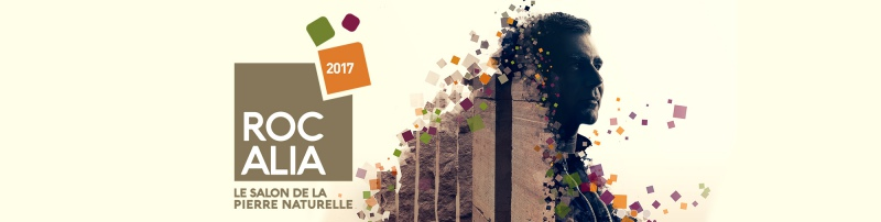 Ev nement 05 12 2017 lyon for Salon vegetal lyon